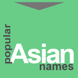 Asian personalised number plates good idea