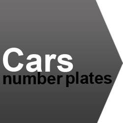 number plate ideas for car models