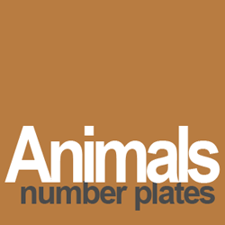 animal number plates